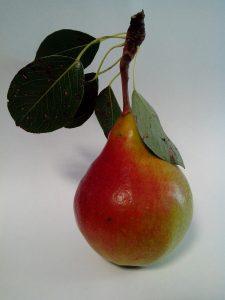 груша-1